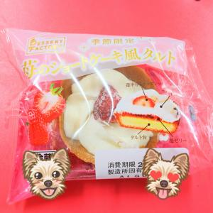 山崎製パン スイーツ 『 苺のショートケーキ風タルト 』 マムで購入した季節限定の洋菓子♡
