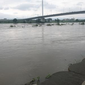 記録的大雨で相模川が氾濫しそうになってる・・・。