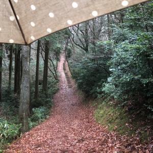 傘さしトレラン