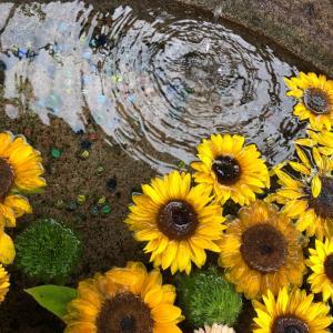 三峯神社の手水舎