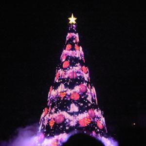 カラー・オブ・クリスマス(ミキ広から)