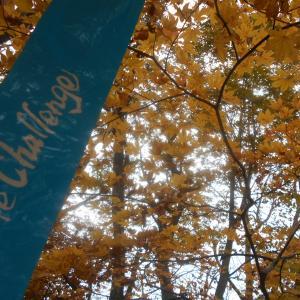 紅葉と絶景の甲州アルプスオートルート