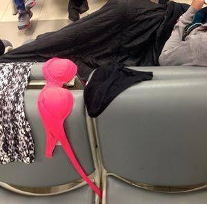 中国人がチェンマイ空港、搭乗待ちの座席で下着を干して物議を醸す