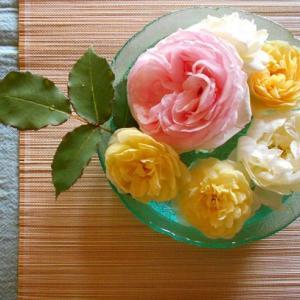 2020年7月の藤田記念庭園茶会 開催のお知らせ