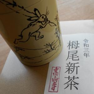 栂尾新茶2021