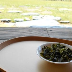 高山寺茶2021新茶
