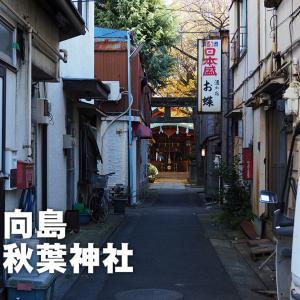 第七九〇回 秋葉神社(墨田区向島)