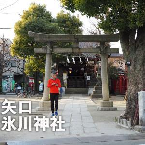 第九一三回 矢口氷川神社(大田区矢口)