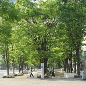 グランモール公園 美術の広場