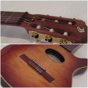 世界最高峰のギター <Buscarino Guitar>