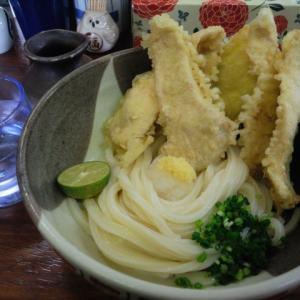うどん巡り2019霜降 麺こい(香川県高松市)