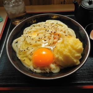 【ブログ総括 2/3】 食べてよかった、讃岐うどん。