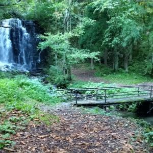 秋の滝巡りと最近のペット達