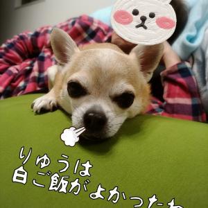 3月やん(^o^)