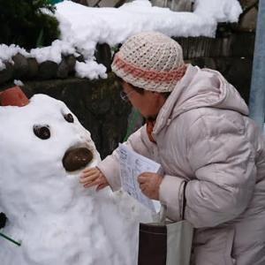 雨にも風にも大雪にもまけず・・・