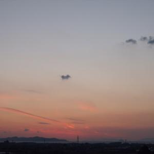 2019年01月07日 空とシロ 夕