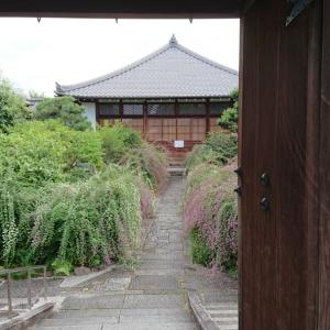 萩の寺「常林寺」