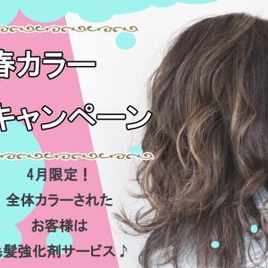 春のおすすめヘアカラーで、混ぜるだけ毛髪改善トリートメント無料♪