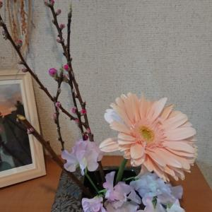 咲く桃の花と咲かない桃の花の違い