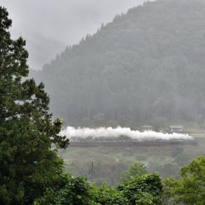 雨の白久(秩父鉄道C58)