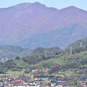 山は既に晩秋の気配(上越線C61)