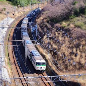 横浜でこんなに自然が残っている場所(東海道本線)