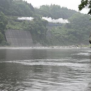 雨の利根川(上越線D51)