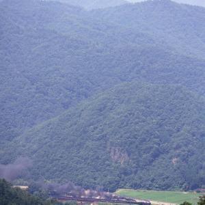 長門峡を見下ろす(山口線C57+C56)