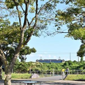 公園から貨物線を眺める(高島線EF65)