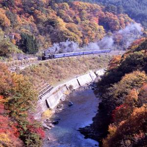 盛秋の諏訪峡(上越線D51)