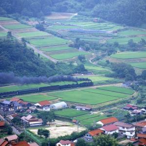 津和野の棚田(山口線C56+C57)