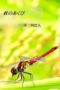 今年の秋の、新作詩集が出版されました。