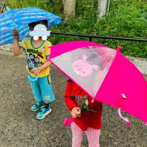 オンライン会と雨降り