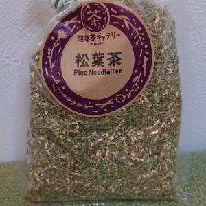 松の葉茶スタート