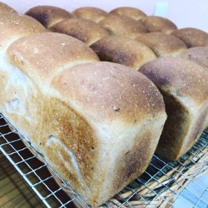 卵、乳製品不使用のフランスパン生地のミニ食パン