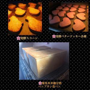 9月24日(木曜日)小麦ふすま&全粒粉パン