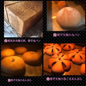 9月26日(土曜日)小麦ふすま&全粒粉パン屋さん