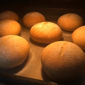10月27日(火曜日)小麦ふすまパン&全粒粉パン、低糖質パン屋さん