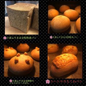 10月29日(木曜日)小麦ふすま&全粒粉の低糖質ぱん屋さん✨✨