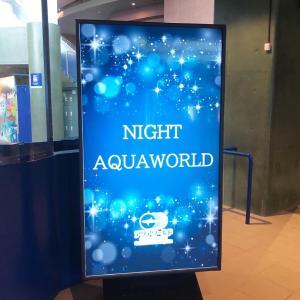『NIGHT AQUA WORLD』✨