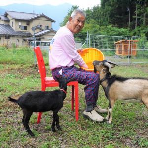 老人と山羊