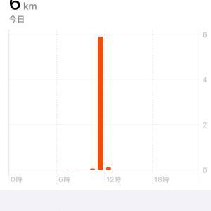走ったら眠った。