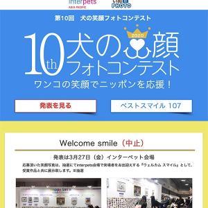晴耕雨読「第10回犬の笑顔フォトコンテスト」楽しくて笑う犬たちの写真