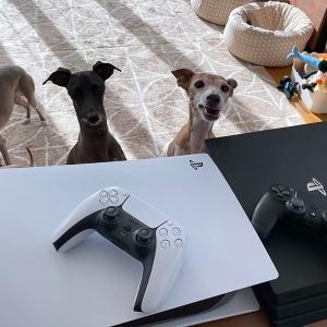 PS4からPS5へ 交換だち