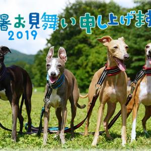 2019ねん8がつ☆残暑おみまいもうしあげます。