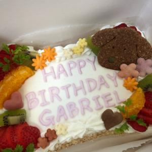 HAPPY BIRTHDAY ☆ GABRIEL