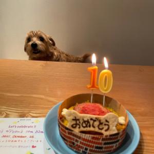 坊っちゃん10歳おめでとう!