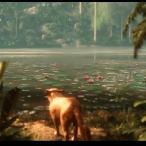 畜産が燃やすアマゾンの森。