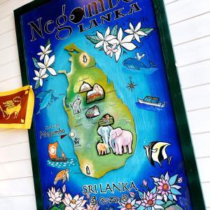 ニゴンボランカ。