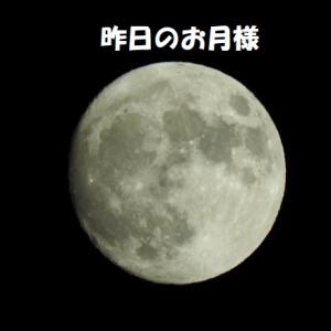 まん丸お月様にお願い